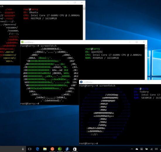 windows, linux